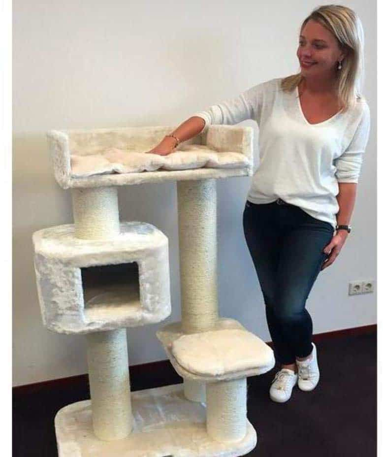 Cat Tree King's Cat Palace – A Cat Tree for Large Cats