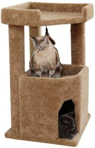 Cozy Cat Furniture Corner Cat Tree Condo For Large Cats